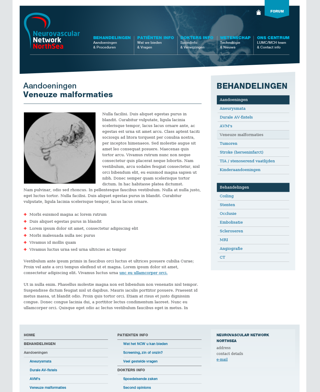 Neurovascular Network Northsea, NL